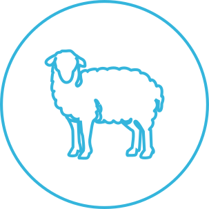 Symbol of Equimade Wool